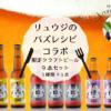 【リュウジのバズレシピコラボ限定】クラフトビール9本セット