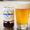 パタゴニアから多年生穀物使った発泡酒「ロング・ルート・ウィット」