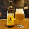 塩と乳酸菌で醸造した「瀬戸内レモン&ソルトビール」発売!